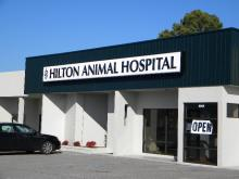 Hilton Animal Hospital