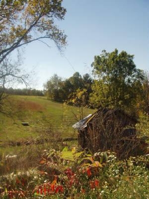 farm autumn