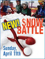 snow battle 2010
