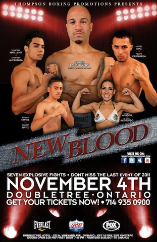 Nov 4 fight info