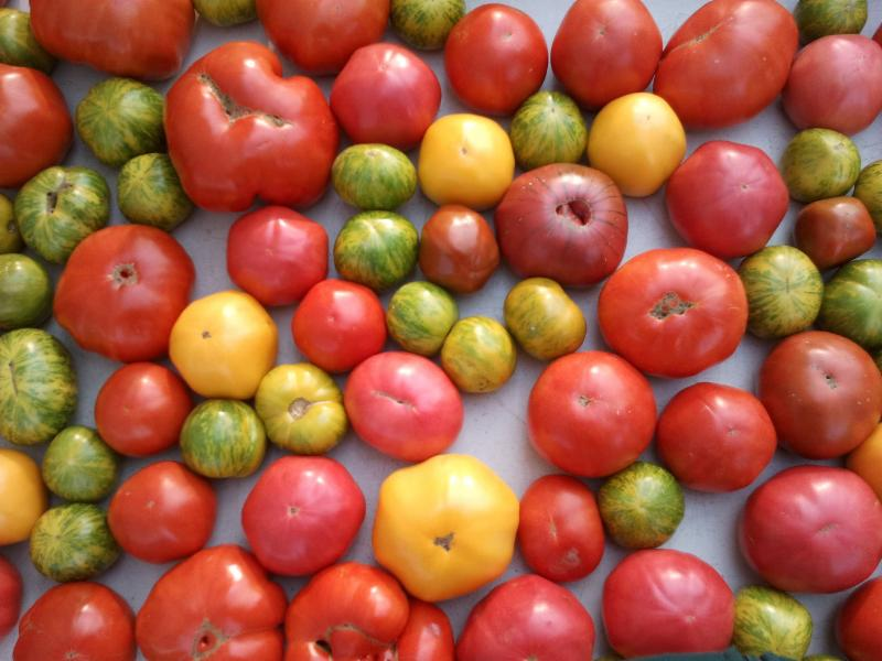 Fruit Blast E-newsletter:  Happy Labor Day Weekend!  We'll see you at the Farmers Market