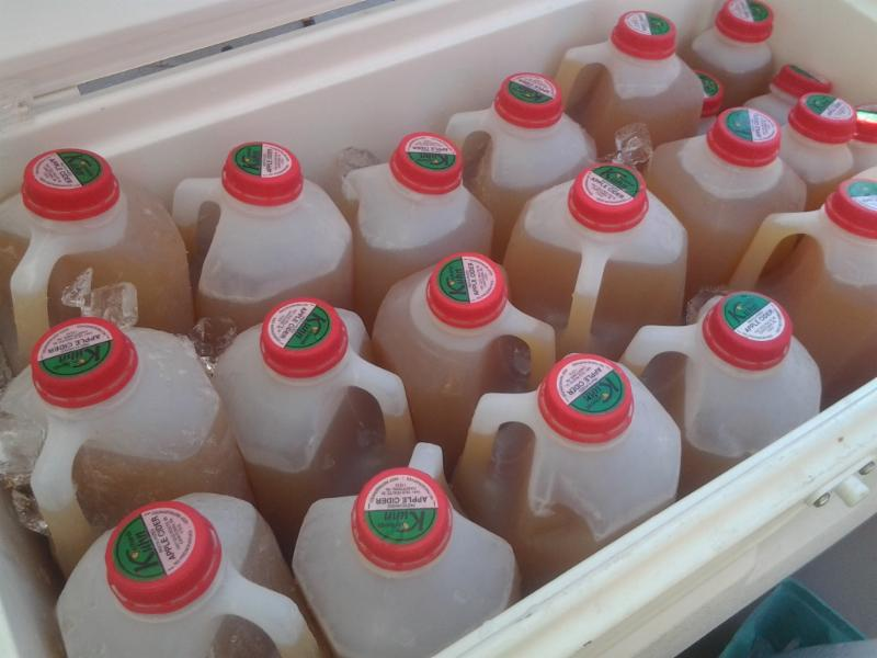 Fresh Pressed Cider!  Learn why our cider is light now and dark later in the season.