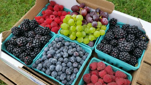 Fill-A-Flat Special at market this weekend:  Raspberries, Blueberries, Blackberries and Grapes