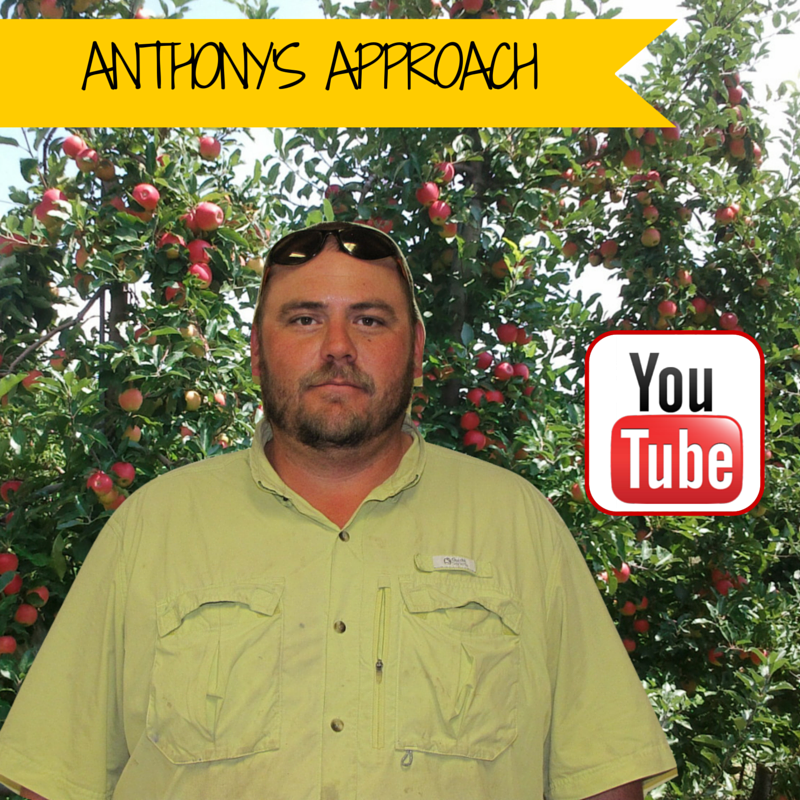 Learn how Anthony determines when to harvest apples in our latest You Tube video.