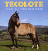 Tecolote: The Llittle Horse That Could