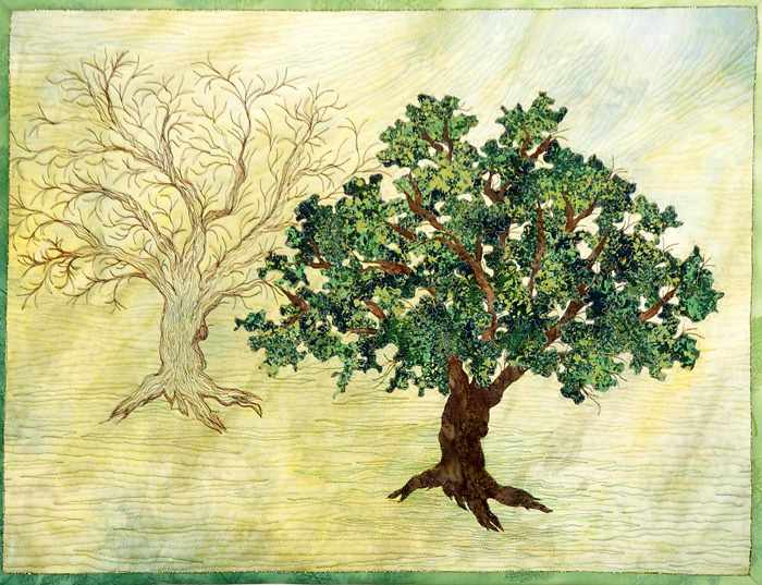 Transformation Tree