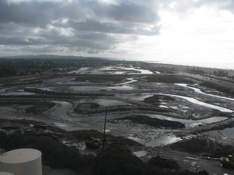 earthcam photo of wetlands