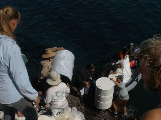 volunteers carrying barrels