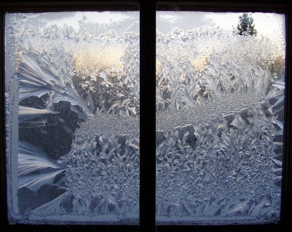 window panes1