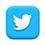 H&H Twitter icon