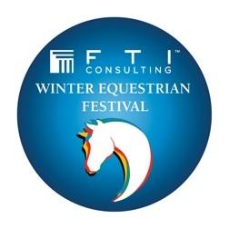 2013 WEF logo