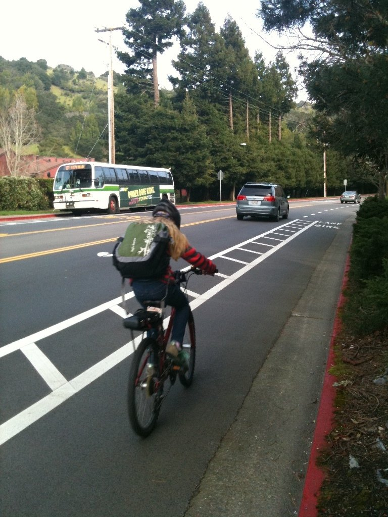 white hill bike lanes