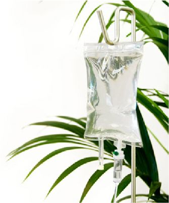 IV bag plus plant