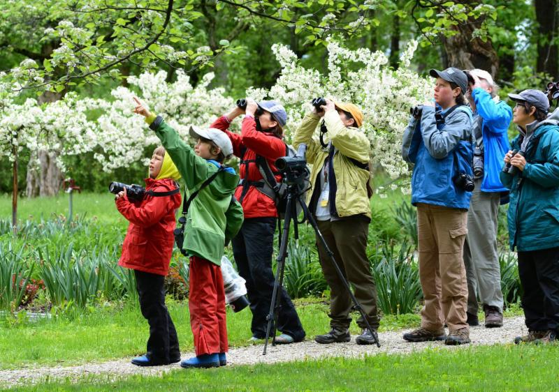 Four Birders Enjoying Pearson Metropark