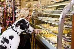 A dog checks out the bakery display
