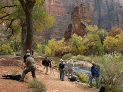 Zion Fall Photo Workshop