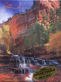 Puzzle of North Creek in Zion National Park