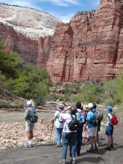 Field Institute enjoying Zion National Park.