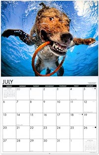 Calender Picturing Dogs