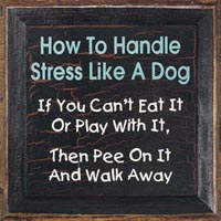 Handle Stress Like a Dog