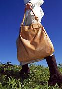 Amber Mountain Bag
