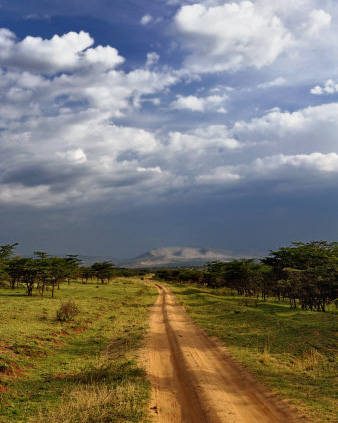 Serengeti Soil Road