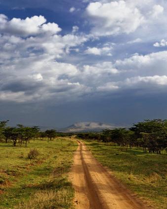 Serengeti Soil Road