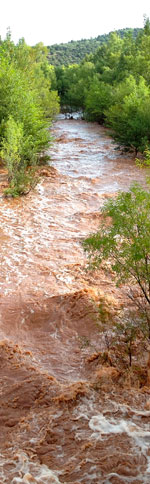 creek west 130911