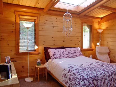 pleiadian cabin 8