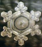 WaterCrystalGratitude