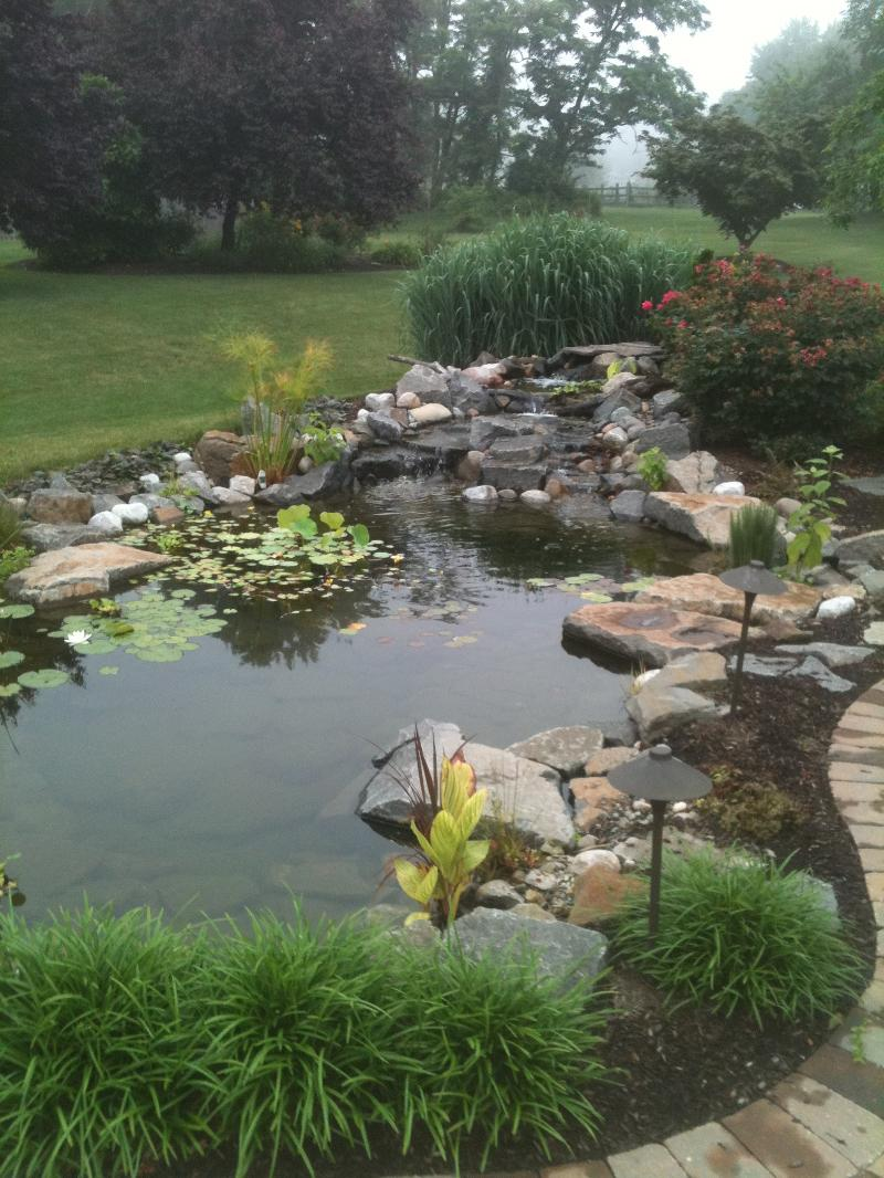Natures first green is gold for Large pond maintenance