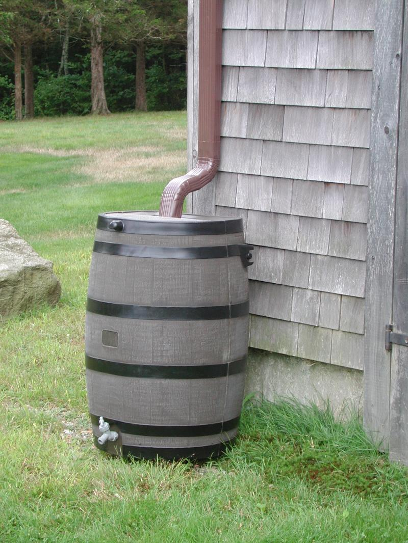 Rain Barrel collecting water from roof