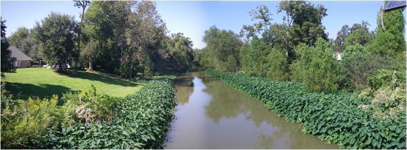 Bayou Lafourche Donaldsonville