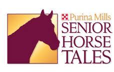 senior horse tales