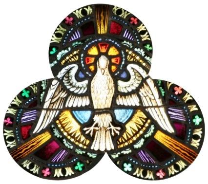 Dove Glass