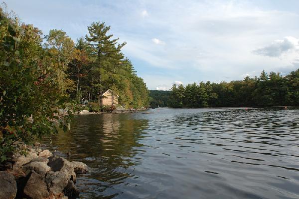 Harvard Bare Hill Pond photo
