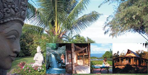 Maui Retreat