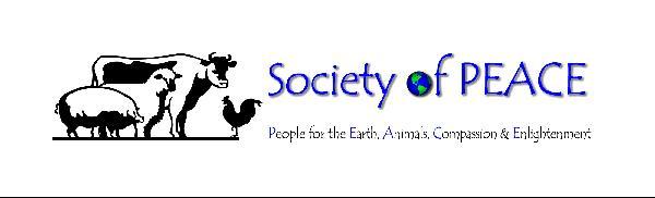SOP horizontal logo