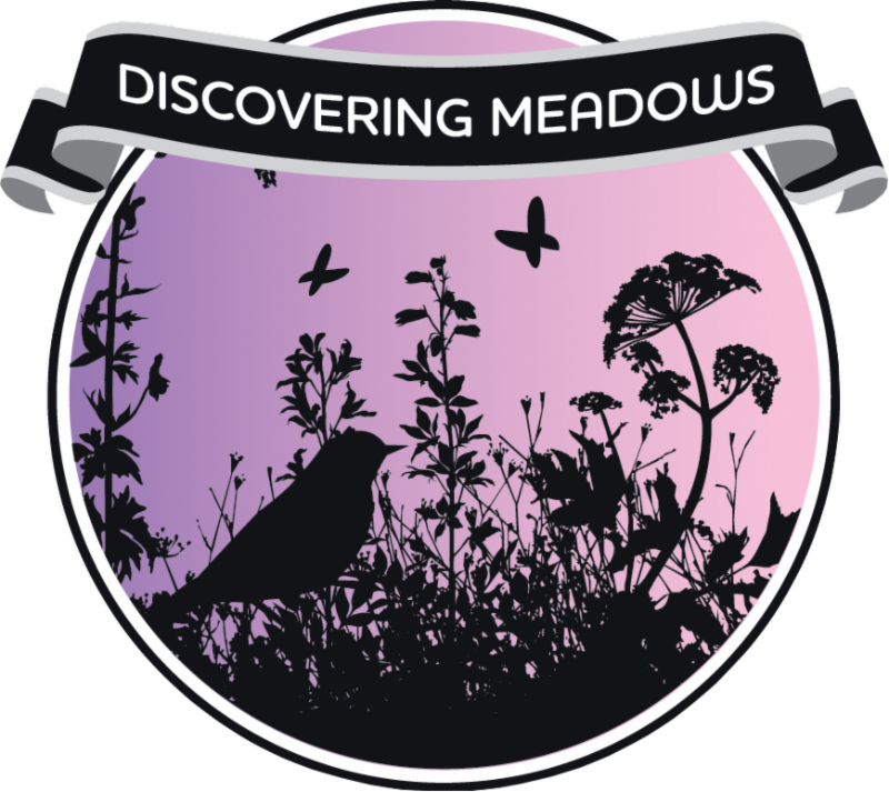 Discovering Meadows for Professionals