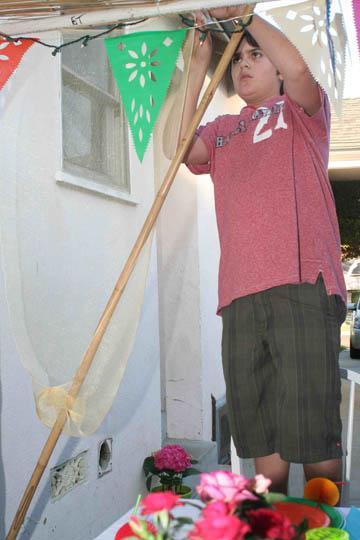 Max Sukkah2