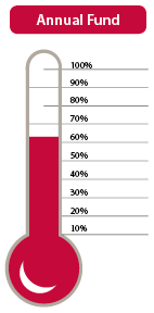Annual Fund Thermometer