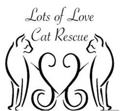 Lots of Love Rescue