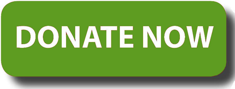 donate button green