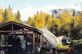 Arctic Organics Farm