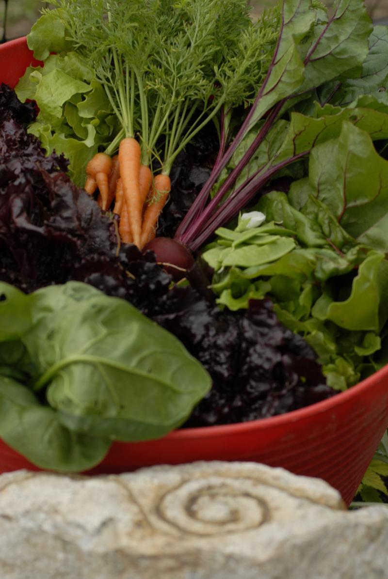 veggies at grace