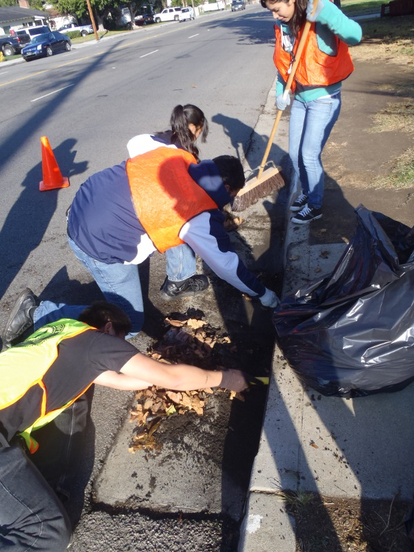 Storm Drain    cleanup