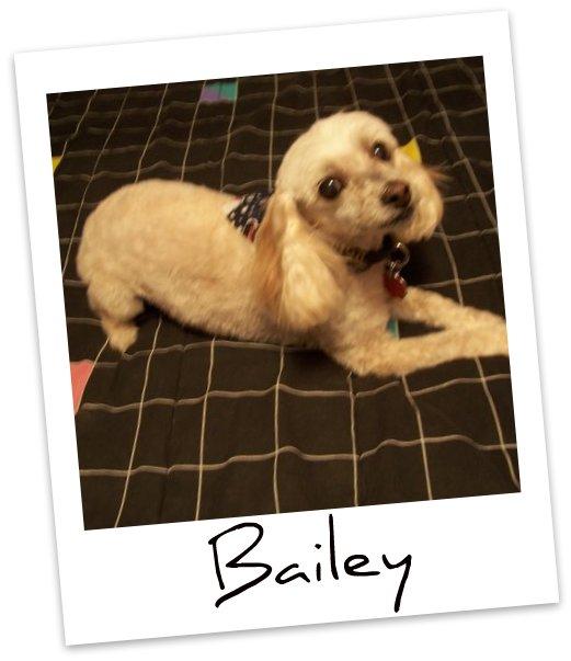 Bailey I