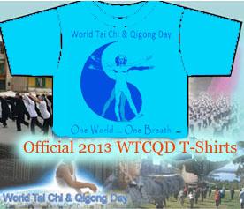 T-Shirt 2013 Mockup