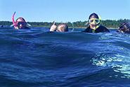 Image courtesy of Michigan Sea Grant