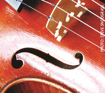 This is a picture of a violin